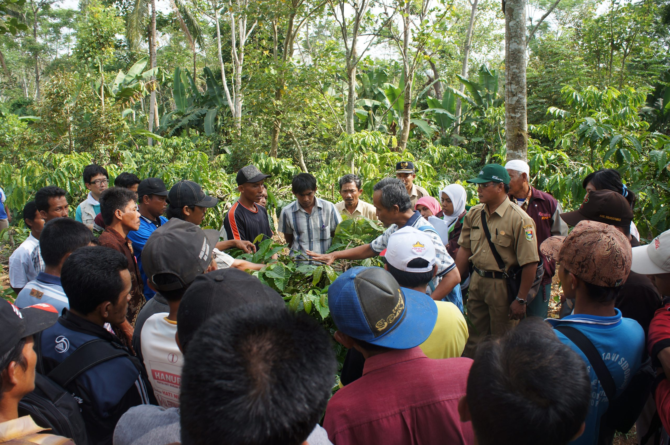 Sustainable farming training in Indonesia
