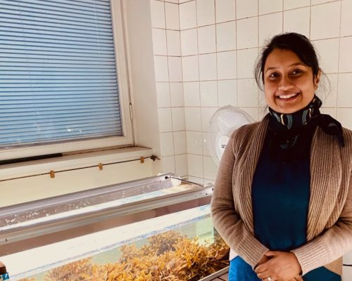 Gayathri Murukesan is improving the condition of the Baltic Sea and turning algae into everyday products